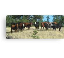 ...the posse was waiting at the edge of town..... Canvas Print