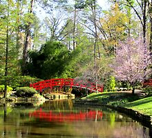 Walking Sarah Duke gardens in Spring by Samohsong