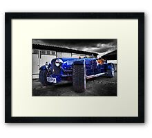 The Zoombug Framed Print