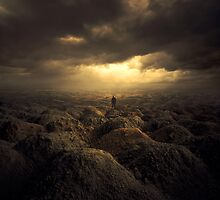 DELUSION FIELDS by Karezoid