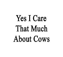 Yes I Care That Much About Cows Photographic Print
