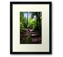 Puzzle Wood Path Framed Print