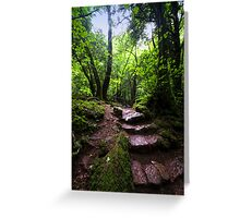 Puzzle Wood Path Greeting Card