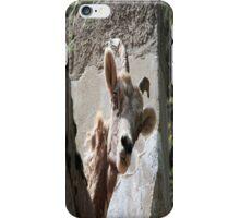 Mountain Goat iPhone Case/Skin
