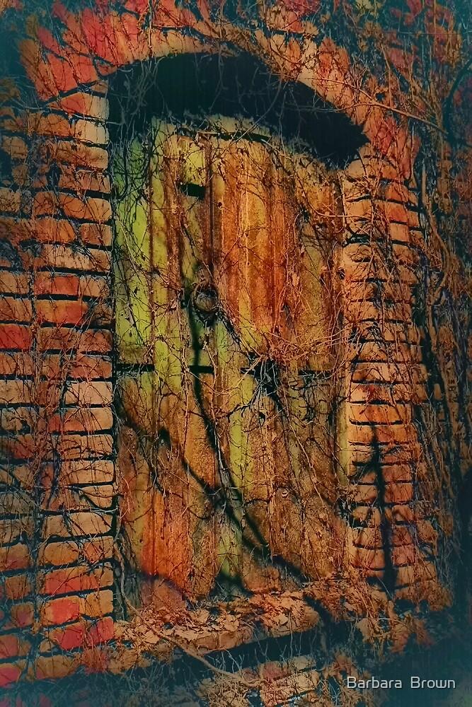 Haunted Window by Barbara  Brown