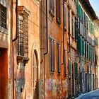Pisa Street, Italy by Bruce Taylor