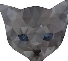 kitten head by BoYusya