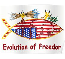 Evolution of Freedom Poster Poster
