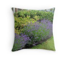 Lavender Welcome Throw Pillow