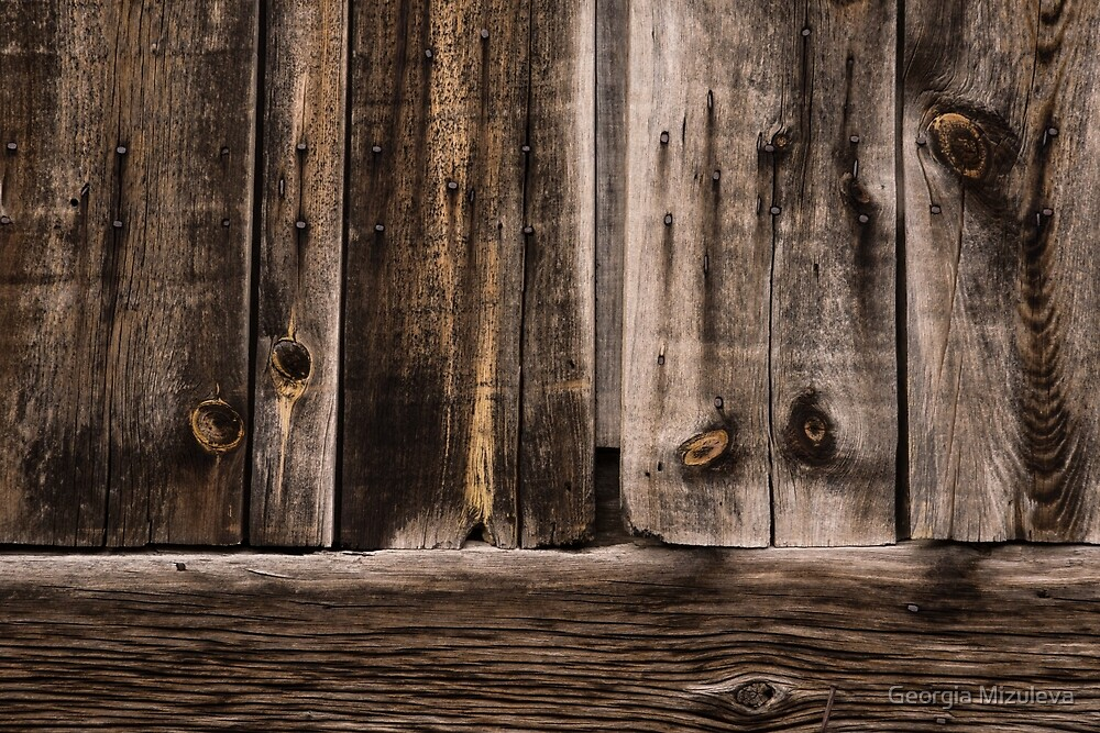 Weathered Wooden Abstracts - 2 by Georgia Mizuleva