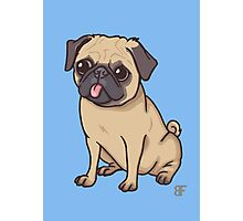 PUG (blue) Photographic Print