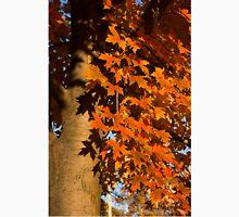 Crisp Autumn Shadows  Unisex T-Shirt