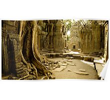 Cambodia: Temples - Ta Prohm Poster