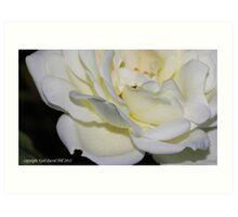 macro flora 019 Art Print