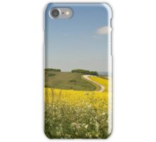 Devil's  punch bowl,Berkshire. iPhone Case/Skin
