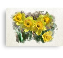 Spring Daffodils Watercolor Art Canvas Print