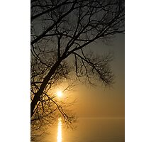 The Rising Sun and the Tree Photographic Print