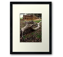 Countryside Of S.A. Framed Print