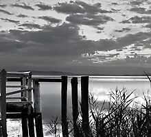 Lake Illawarra BW by Toma Iakopo | Tomojo Photography