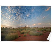 Canning Spinifex Poster