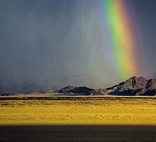 Rainbow's Curtains by Jill Fisher