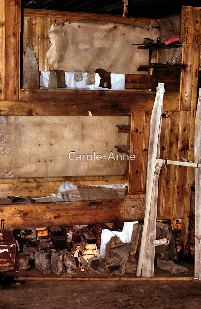 Explorer's Hut Interior #3 by Carole-Anne