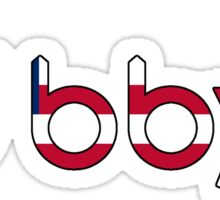 BBYO American Flag Sticker