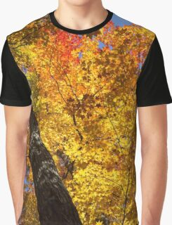 Autumn Foliage Delight In Vivid Yellow, Red And Orange Graphic T-Shirt