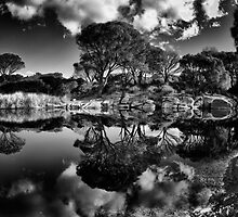 Sky Mirror Black & White by SeaShell