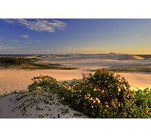 Dune Field Photographic Print