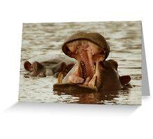 Yawning Hippo Greeting Card
