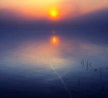 A Mystery Morning by THHoang