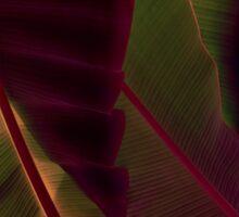 Rich Maroon and Jungle Green - Exotic Tropics Sticker