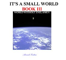 ITS A SMALL WORLD BOOK III WORLD WITHOUT END, AMEN by MYMANATEE ACADEMY