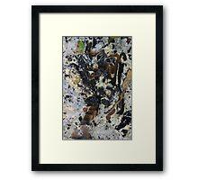 tropical tree Framed Print
