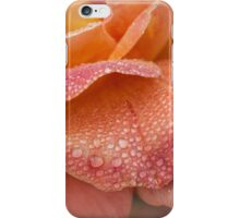 Rose petals in the rain iPhone Case/Skin