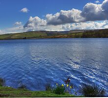 Peak District Reservoir by Devereux Purdon