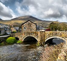 The Bridge at Beddgelert by Irene  Burdell