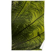 Tropical Green Curves and Diagonals - a Vertical View Poster