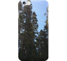 Evergreen Trees iPhone Case/Skin