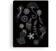 Sea Ballet in Black and White with Apologies to Ernst Haeckel Canvas Print
