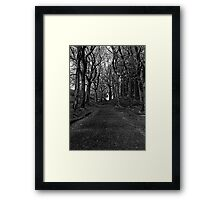 The Twisted Path Framed Print