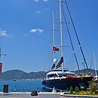 Turkey Sailboat by Dime9d