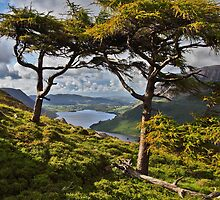 Crummock Water by Reinhardt