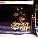 Rose by anunayr