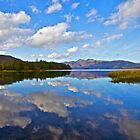 Cloudy Derwent Water by Reinhardt