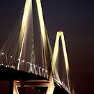 Ravenel Bridge by Sandy Dunn