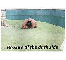 Jedi Chimp Poster