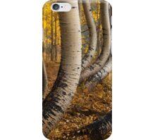 Aspen Tree iPhone Case/Skin