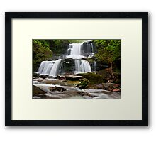Ricketts Glen Framed Print